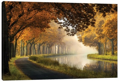 A Calm Morning Canvas Art Print