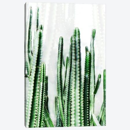 Cactus IV 3-Piece Canvas #BOH101} by Mareike Böhmer Canvas Print
