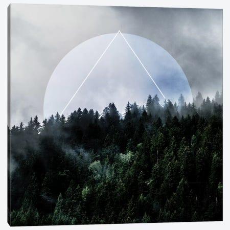 Foggy Woods III Canvas Print #BOH119} by Mareike Böhmer Canvas Artwork
