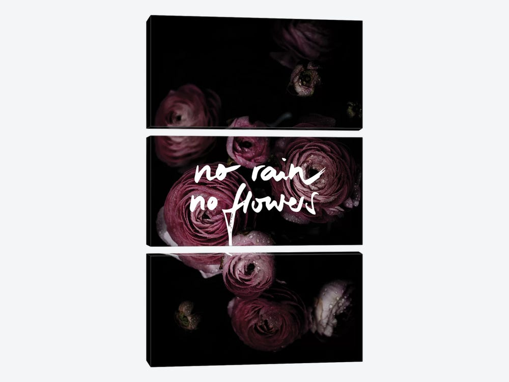 No Rain No Flowers by Mareike Böhmer 3-piece Art Print