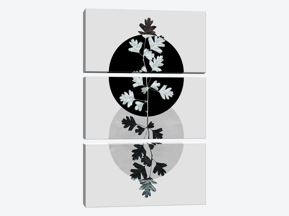 Geometry And Nature II by Mareike Böhmer 3-piece Canvas Art Print