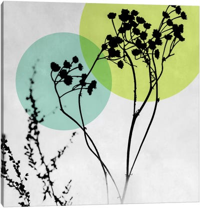 Abstract Flowers II Canvas Art Print