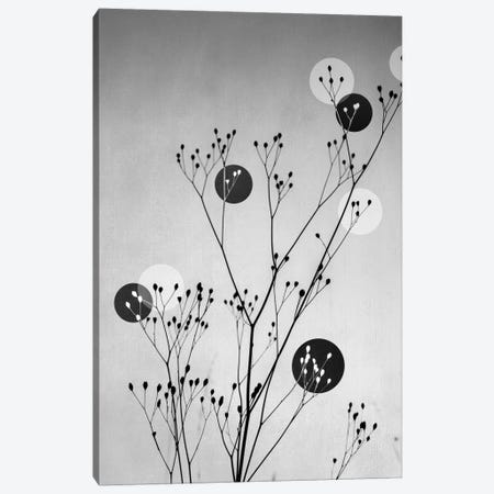 Abstract Flowers III Canvas Print #BOH3} by Mareike Böhmer Canvas Art Print