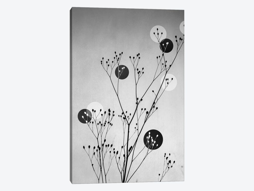 Abstract Flowers III by Mareike Böhmer 1-piece Canvas Artwork