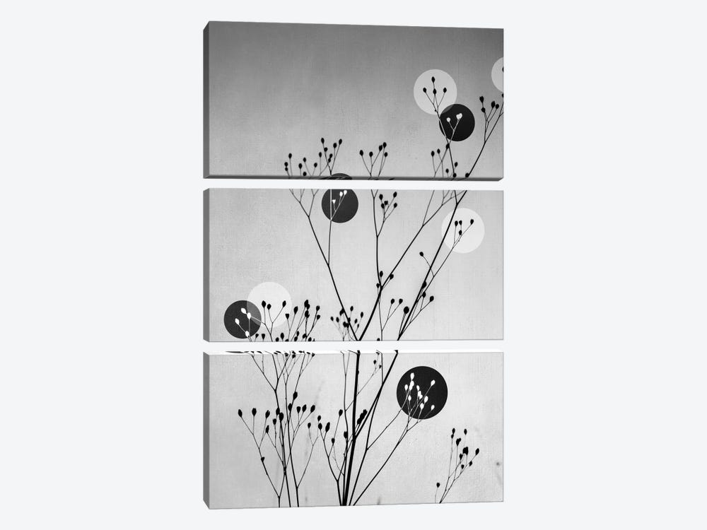 Abstract Flowers III by Mareike Böhmer 3-piece Canvas Artwork