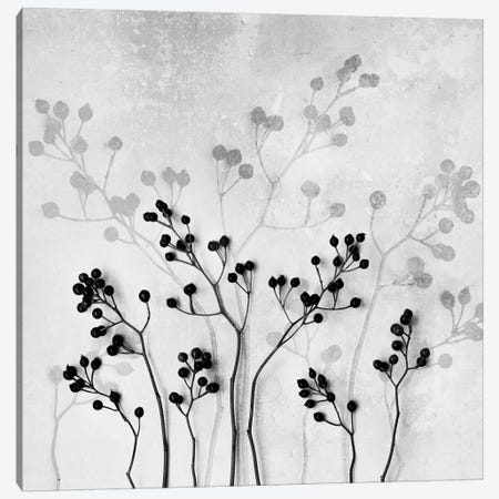 Abstract Flowers V Canvas Print #BOH4} by Mareike Böhmer Canvas Wall Art