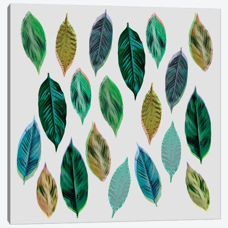 Green Leaves II Canvas Print #BOH55} by Mareike Böhmer Canvas Print