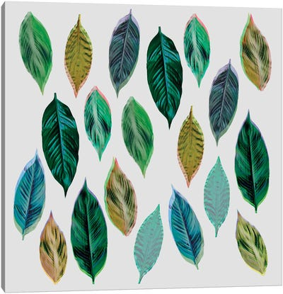 Green Leaves II Canvas Art Print