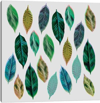 Green Leaves II Canvas Art Print