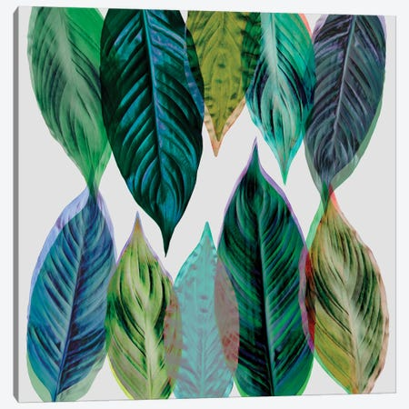 Leaves Green Canvas Print #BOH60} by Mareike Böhmer Canvas Art Print