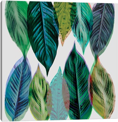 Leaves Green Canvas Art Print