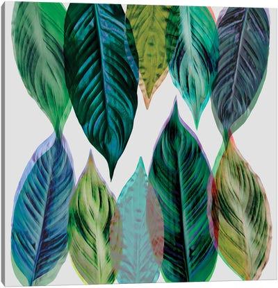 Leaves Green Canvas Art Print
