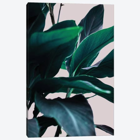 Leaves IV Canvas Print #BOH61} by Mareike Böhmer Canvas Art Print