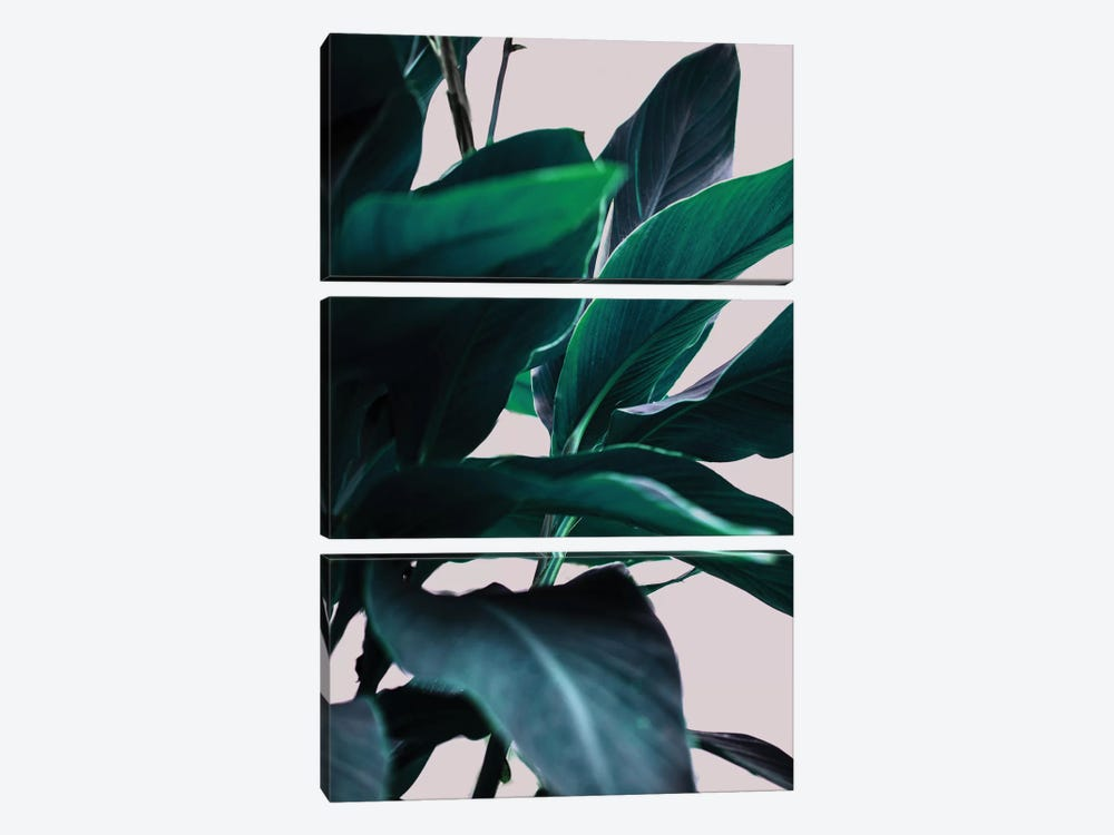 Leaves IV 3-piece Canvas Print