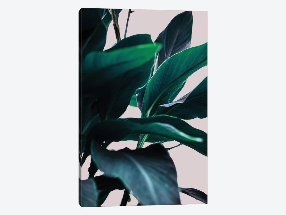 Leaves IV by Mareike Böhmer 1-piece Canvas Art Print