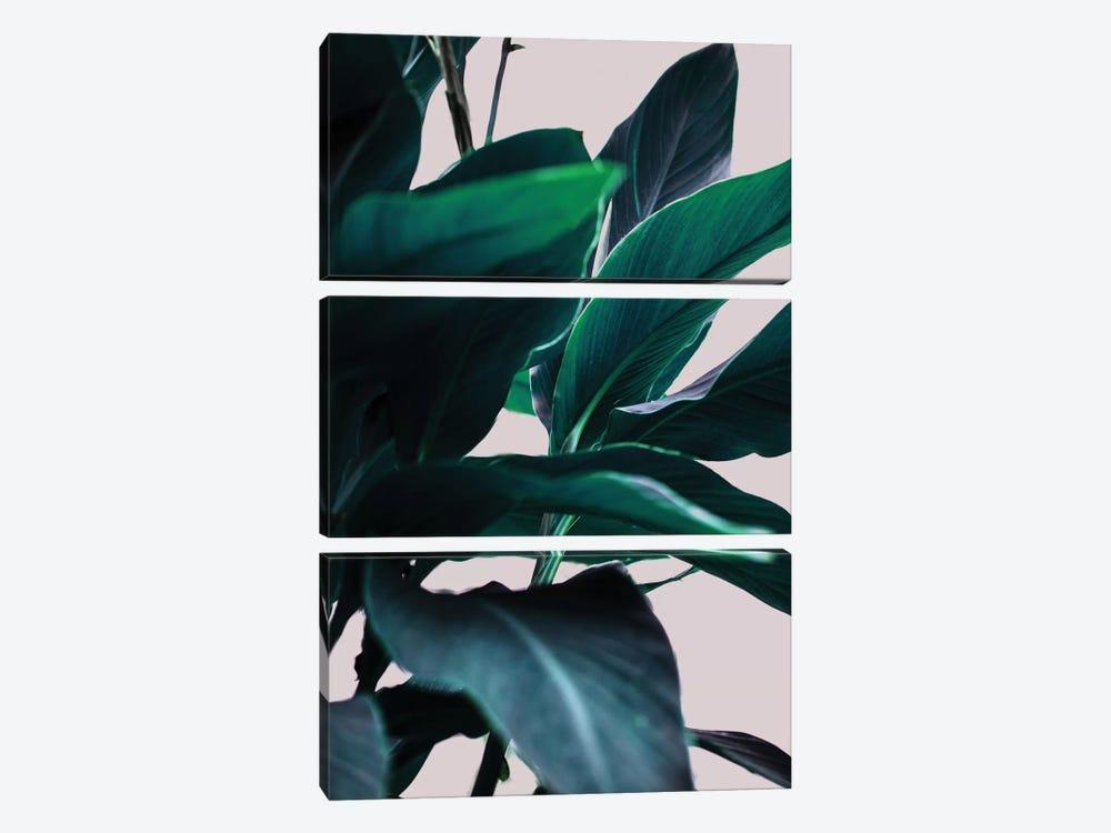 Leaves IV by Mareike Böhmer 3-piece Canvas Print