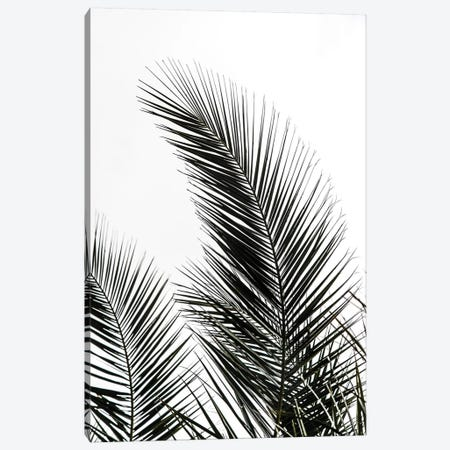Palm Leaves I Canvas Print #BOH82} by Mareike Böhmer Art Print