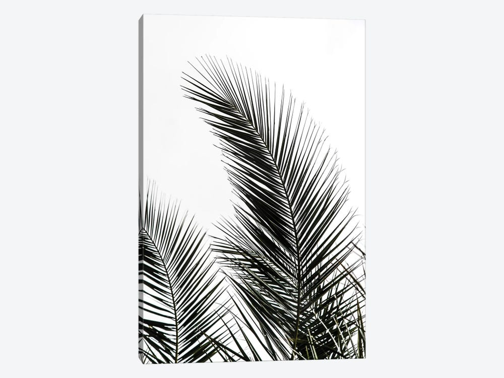 Palm Leaves I 1-piece Canvas Artwork