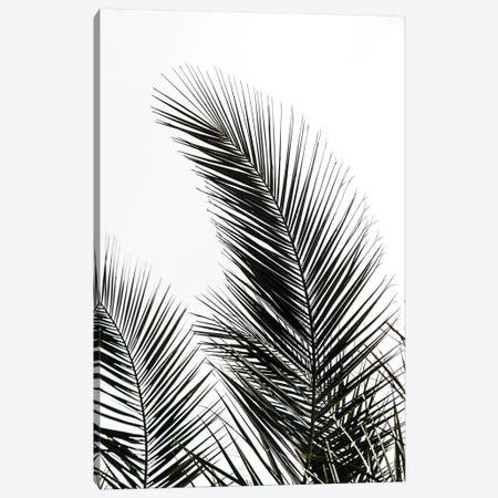 Palm Leaves I Canvas Print #BOH82} by Mareike Böhmer Art Print