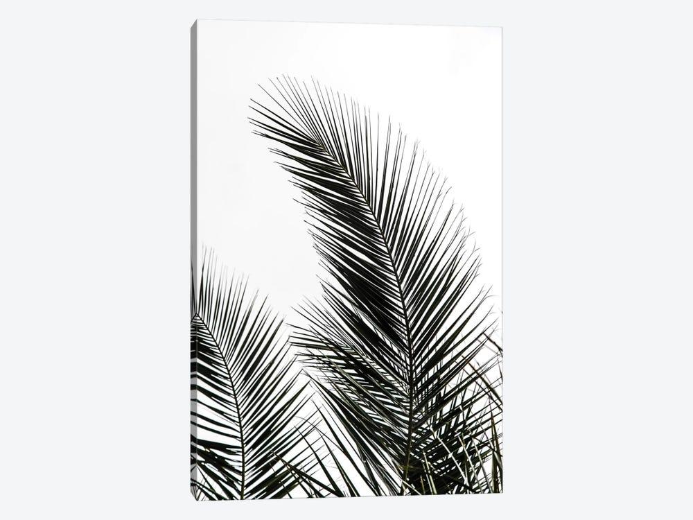Palm Leaves I by Mareike Böhmer 1-piece Canvas Artwork