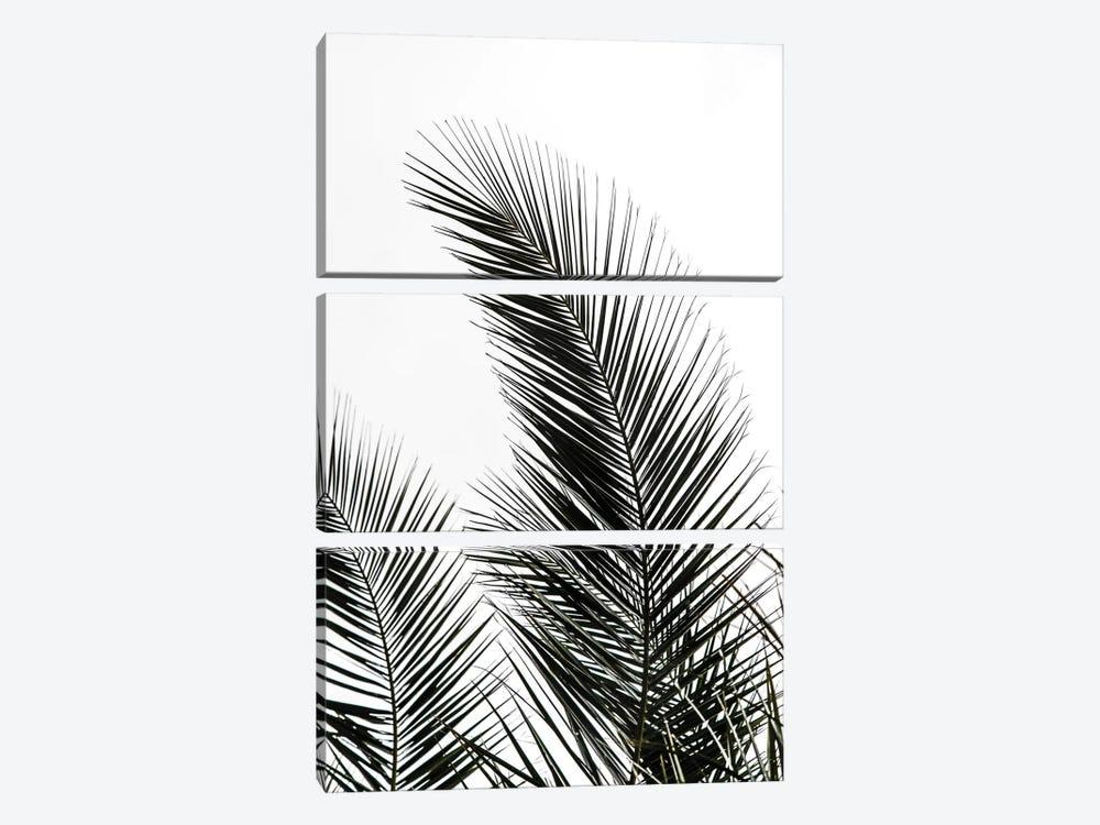 Palm Leaves I by Mareike Böhmer 3-piece Canvas Artwork