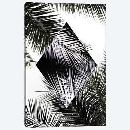 Palm Leaves II Canvas Print #BOH83} by Mareike Böhmer Art Print