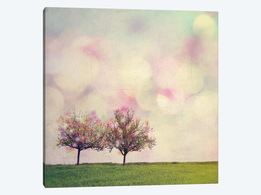 Perfect Day by Mareike Böhmer 1-piece Canvas Wall Art