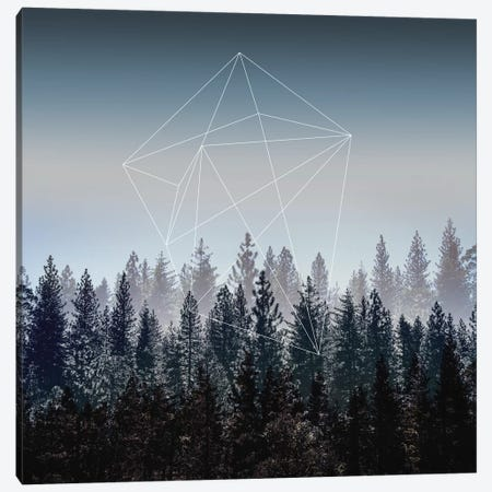 Woods I Canvas Print #BOH93} by Mareike Böhmer Canvas Wall Art