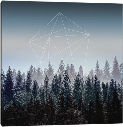 Woods I Canvas Art Print