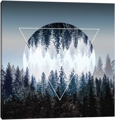 Woods IV Canvas Art Print
