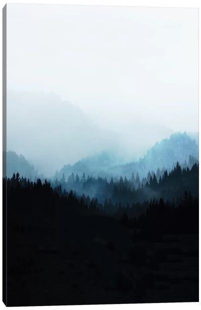 Woods V.Y Canvas Art Print