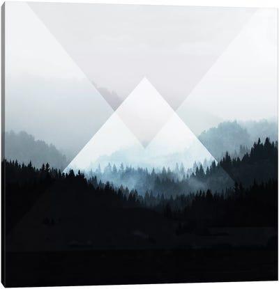 Woods V.Z Canvas Art Print