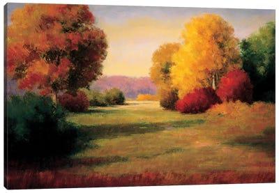 The Morning Light I Canvas Art Print