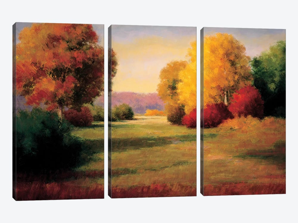 The Morning Light I by Melissa Bolton 3-piece Canvas Art