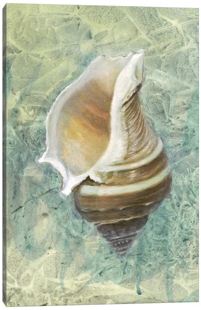 Calling from The Sea I Canvas Art Print