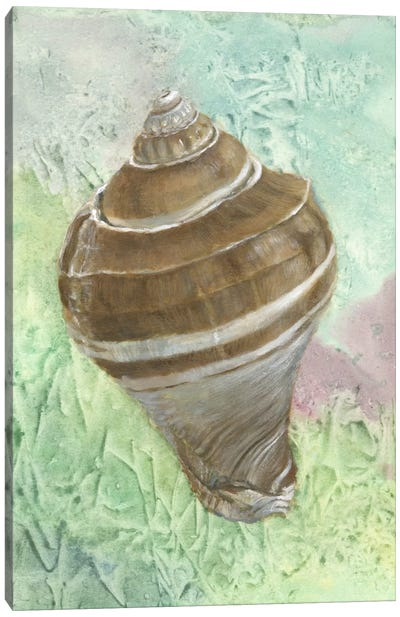 Calling from The Sea IV Canvas Art Print