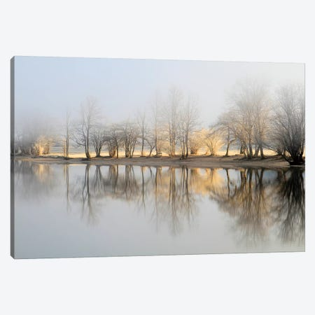 January Morning Canvas Print #BOO1} by Bor Canvas Wall Art
