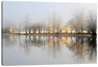 January Morning Canvas Art Print