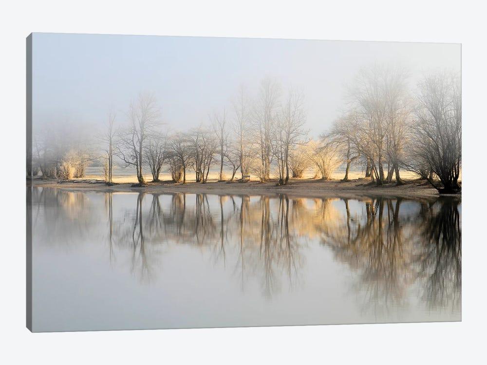 January Morning by Bor 1-piece Canvas Art Print