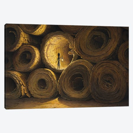 Must Find The Meaning Of All This Canvas Print #BOR112} by Adrian Borda Canvas Print
