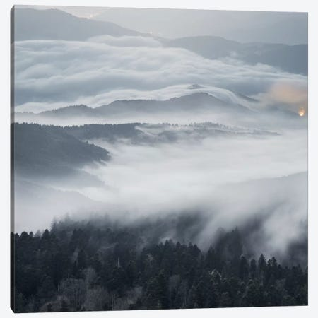 A Magical Dawn Canvas Print #BOR1} by Adrian Borda Canvas Art