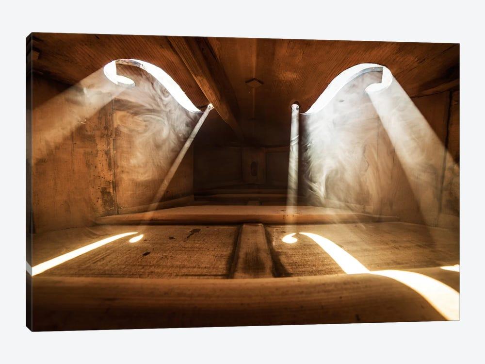 Inside Violin I by Adrian Borda 1-piece Canvas Artwork