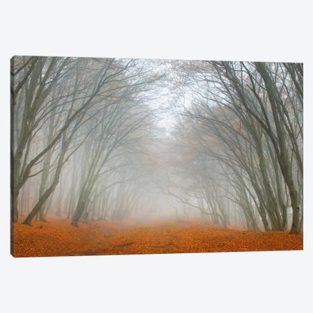 Let's Never Stop Falling In Love Canvas Print #BOR31} by Adrian Borda Canvas Wall Art