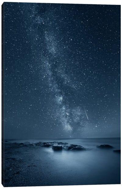 Night Sky Canvas Art Print
