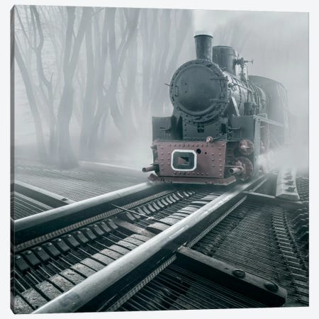 Romantic Tracks Canvas Print #BOR47} by Adrian Borda Canvas Artwork