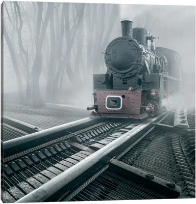 Romantic Tracks Canvas Art Print