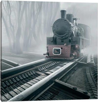 Romantic Tracks Canvas Art Print