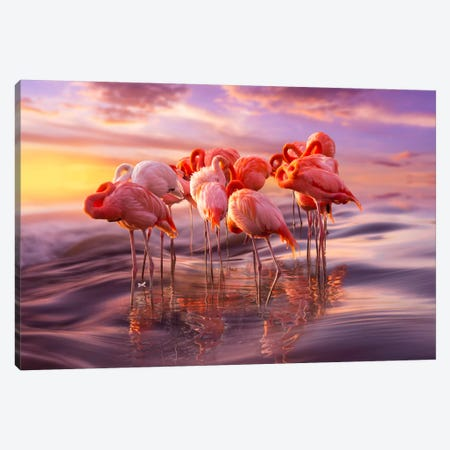 Siesta Canvas Print #BOR52} by Adrian Borda Canvas Artwork