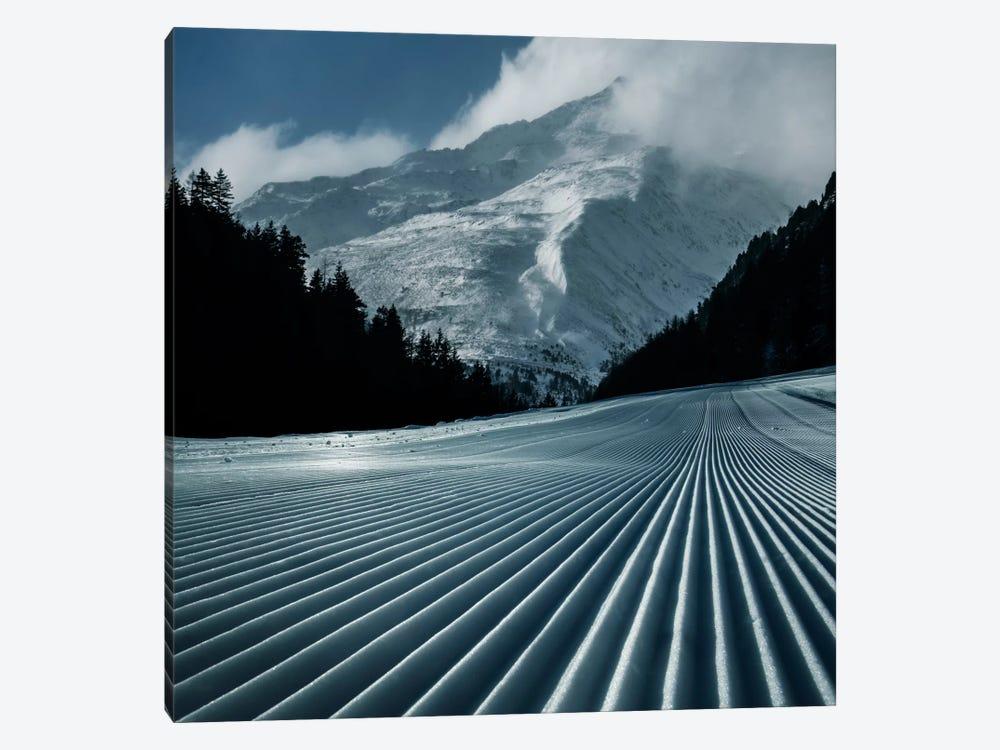 Ski Tracks by Adrian Borda 1-piece Art Print