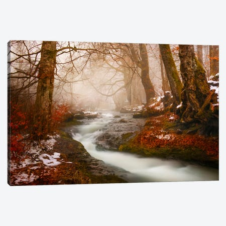 The Morning Walk Canvas Print #BOR59} by Adrian Borda Canvas Wall Art